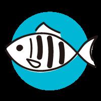 小浜の地魚